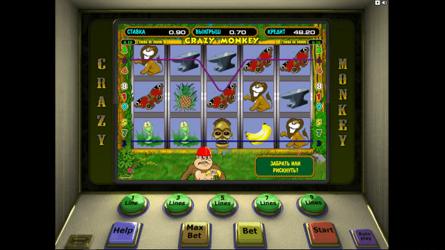 Бонусная игра Crazy Monkey 2