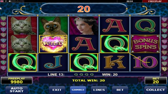 Бонусная игра Diamond Cats 9