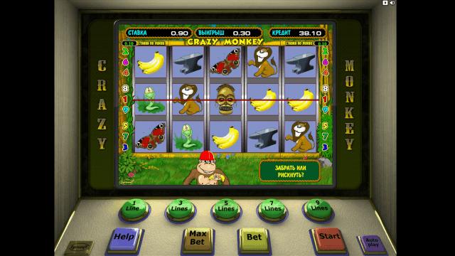 Бонусная игра Crazy Monkey 8