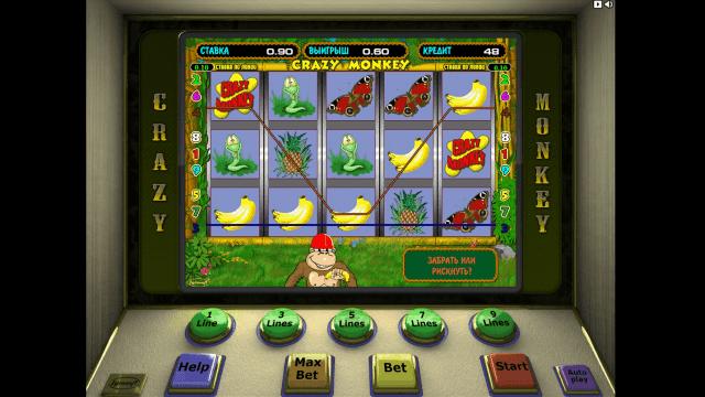 Бонусная игра Crazy Monkey 3