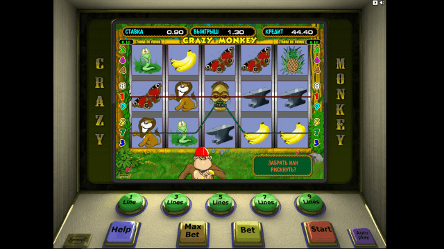 Игровой интерфейс Crazy Monkey 5
